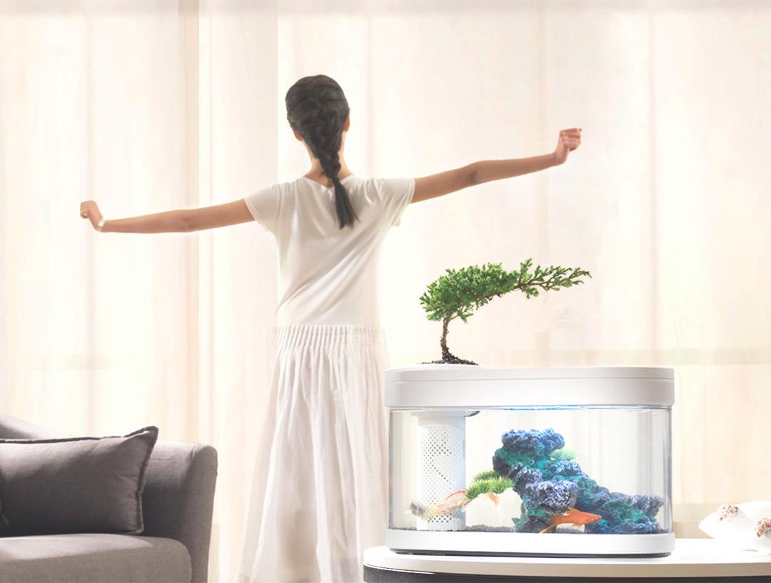 HFJH Amphibian Eco-Aquarium