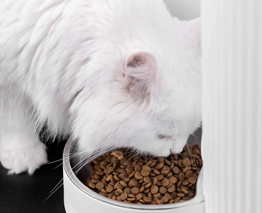 Xiaomi FurryTail Smart Pet Feeder