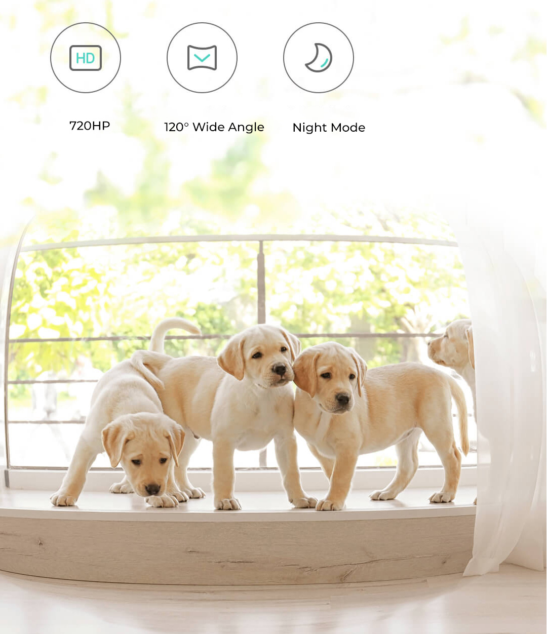 Xiaomi Petoneer Automatic Pet Feeder with Webcam