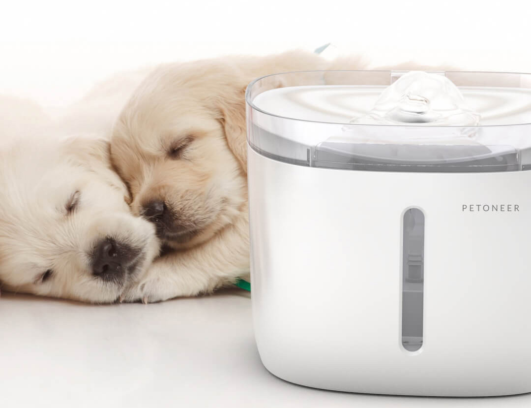 Xiaomi Petoneer Pet Smart Water Dispenser