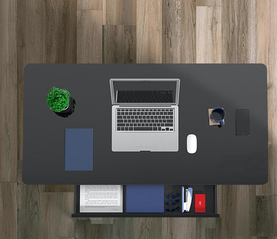 Squirrey Electric Height Adjustable Desk Premium Edition