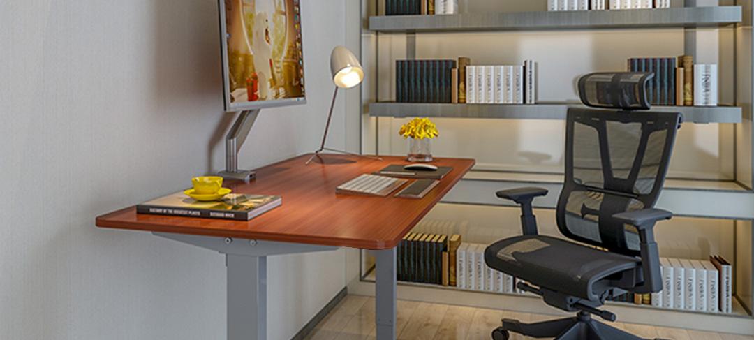Squirrey Electric Height Adjustable Desk Smart Version