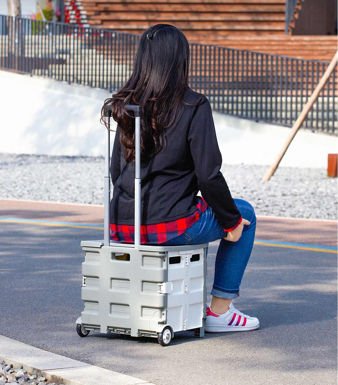 Xiaomi MaiWei Foldable Shopping Cart With Lid