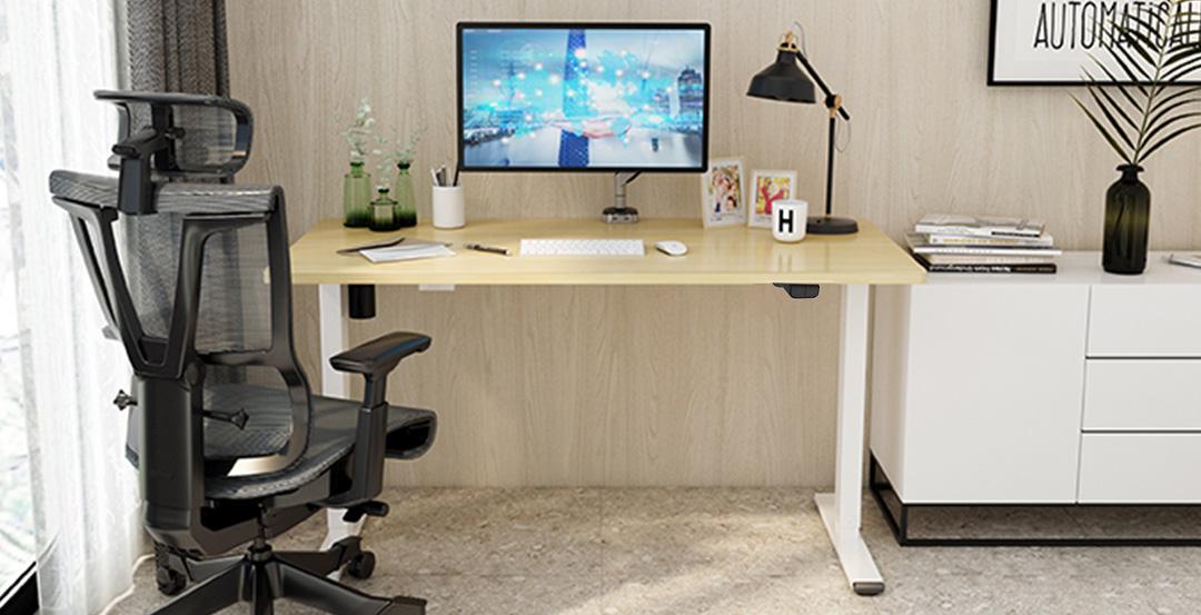 Squirrey Electric Height Adjustable Desk Standard Version